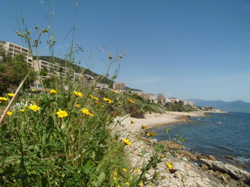 Corse-Du-Sud (c) neandertours